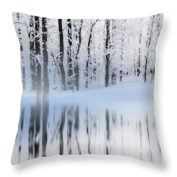 Reflection On A Dream Collingwood, On Throw Pillow