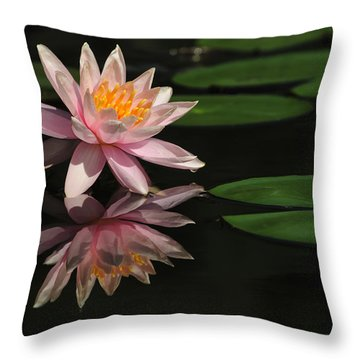 Reflection Throw Pillow by Penny Lisowski