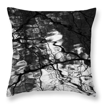 Throw Pillow featuring the photograph Reflection by Yulia Kazansky