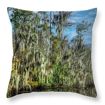 Reflectionist Throw Pillow