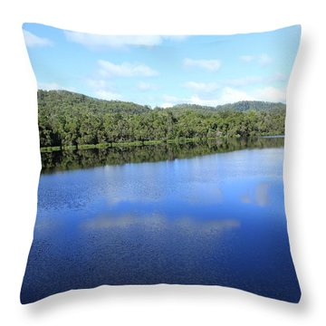 Reflections All Profits Go To Hospice Of The Calumet Area Throw Pillow
