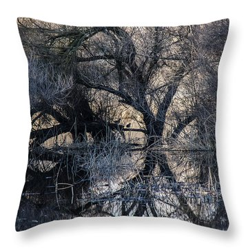 Reflections Throw Pillow by Brian Williamson