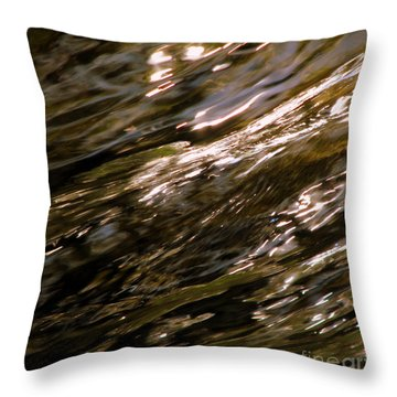 Reflections Throw Pillow by C Ray  Roth