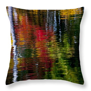 Reflections Throw Pillow by David Cote