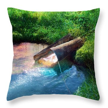 Throw Pillow featuring the photograph Reflections by Gunter Nezhoda