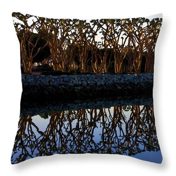 Throw Pillow featuring the photograph Reflections In First Light by Gary Holmes