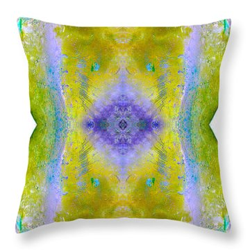 Throw Pillow featuring the photograph Reflections In Ice by Nina Silver