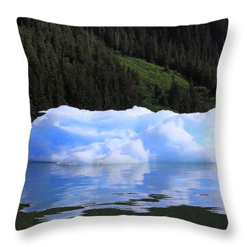 Reflections In The Sea Throw Pillow by Shoal Hollingsworth