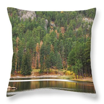 Reflections Throw Pillow by Mary Carol Story