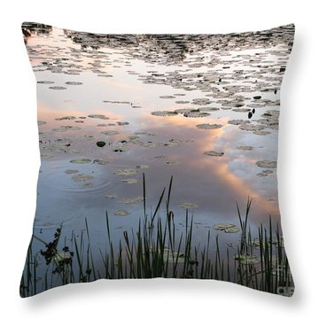 Reflections Throw Pillow by Michael Krek