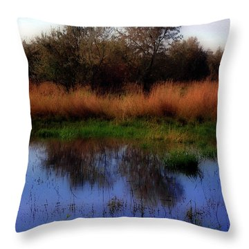 Reflections Throw Pillow by Molly McPherson
