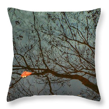 Reflections Of A Leaf Throw Pillow