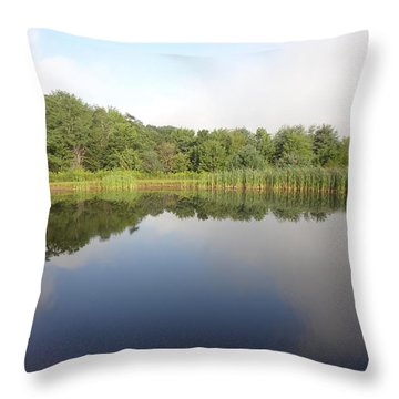 Throw Pillow featuring the photograph Reflections Of A Still Pond by Michael Porchik