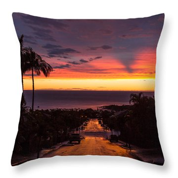 Sunset After Rain Throw Pillow by Denise Bird