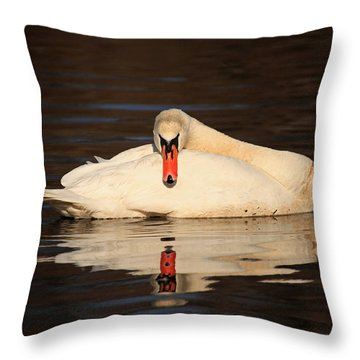 Reflections Of A Swan Throw Pillow by Karol Livote