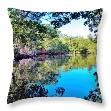Throw Pillow featuring the photograph Reflections Of An Island by Judy Via-Wolff
