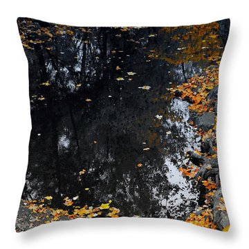 Throw Pillow featuring the photograph Reflections Of Autumn by Photographic Arts And Design Studio