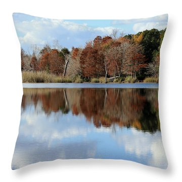 Reflections Of Color Throw Pillow by Debra Forand