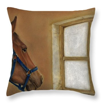 Reflections Of Days Gone By Throw Pillow