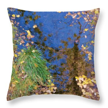 Reflections Of Fall Throw Pillow by Feva  Fotos