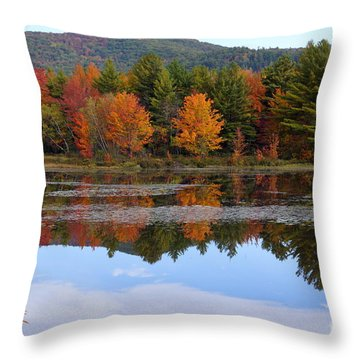 Reflections Of Fall Throw Pillow