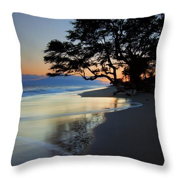 Reflections Of One Throw Pillow by Mike  Dawson