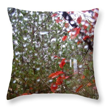 Reflections Of Rain Throw Pillow