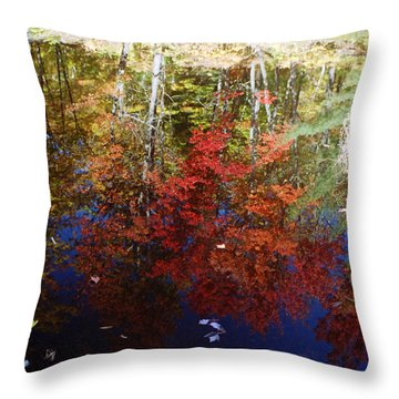 Throw Pillow featuring the photograph Reflections On Algonquin by David Porteus