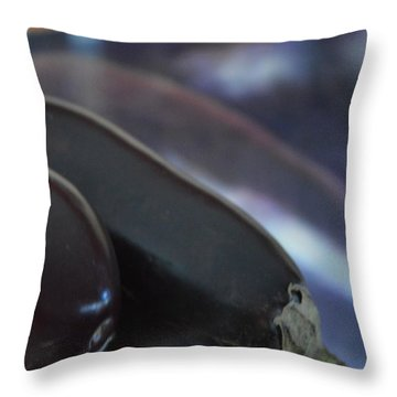 Reflections On An Ingredient Throw Pillow by Brian Boyle