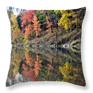 Reflections On The Buffalo Throw Pillow by Marty Koch