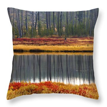Reflections On The Snake Throw Pillow
