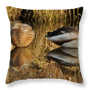 Throw Pillow featuring the photograph Reflections by Sabine Edrissi