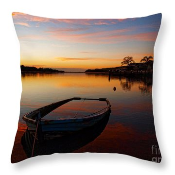 Throw Pillow featuring the photograph Reflections by Trena Mara