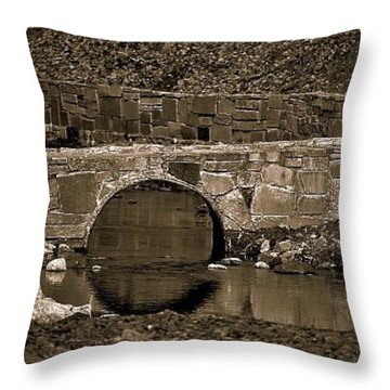 Throw Pillow featuring the photograph Reflective Bridge by Tara Potts