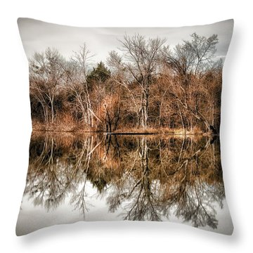 Reflective Morning Throw Pillow by James Barber