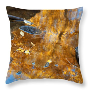 Throw Pillow featuring the photograph The Melting Pot by Jim Garrison