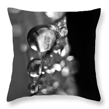 Reflective Rain Throw Pillow by Cheryl Baxter