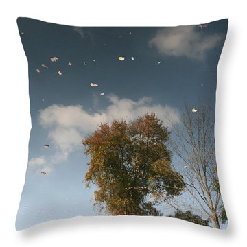 Reflective Thoughts  Throw Pillow by Neal Eslinger