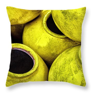 Refrigerator Of The Poor Throw Pillow