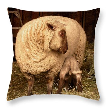 Throw Pillow featuring the photograph Refuel by Kathy Bassett