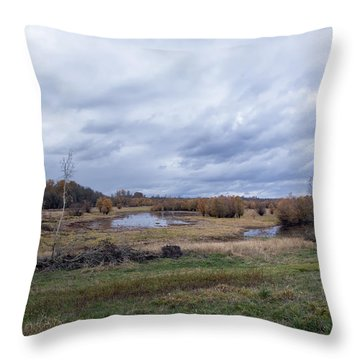 Refuge No 1 Throw Pillow