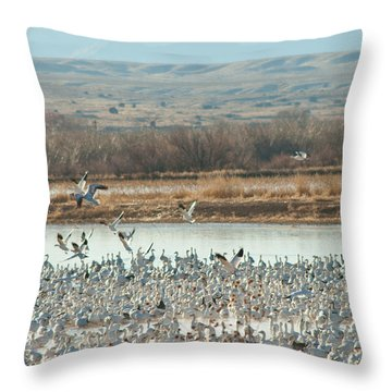 Refuge View 1 Throw Pillow