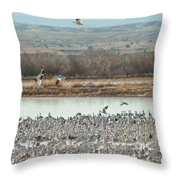 Refuge View 2 Throw Pillow