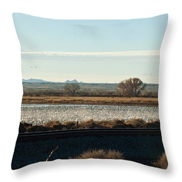 Refuge View 4 Throw Pillow