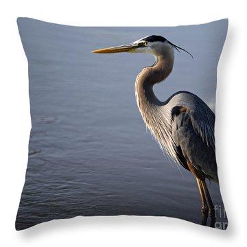 Throw Pillow featuring the photograph Regal Bird by Tamera James