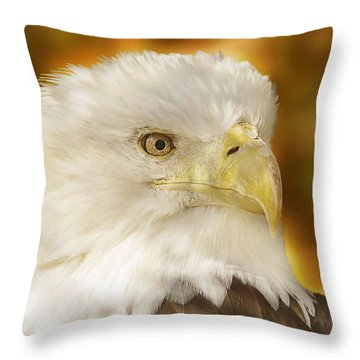 Throw Pillow featuring the photograph Regal Eagle  by Brian Cross