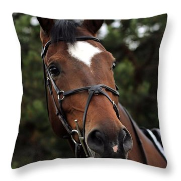 Regal Horse Throw Pillow