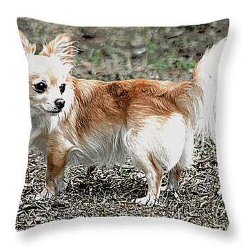 Regal Pose Chihuahua Throw Pillow