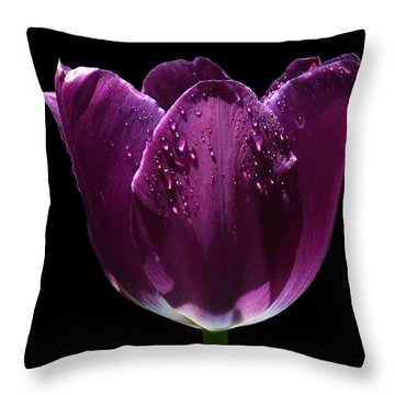 Regal Purple Throw Pillow