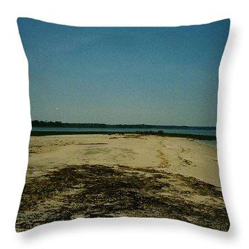 Rehoboth Bay Beach Throw Pillow by Amazing Photographs AKA Christian Wilson